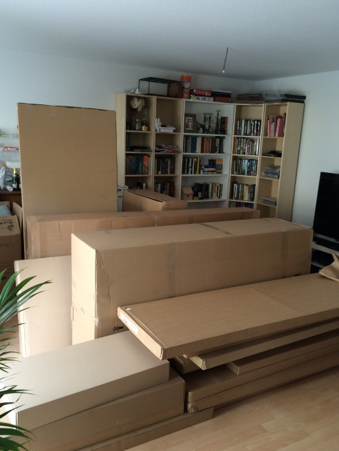 Additionally, there are over a dozen ginormous boxes with ready-to-be-made-furniture (Our sofa! Our bed! Our dining room table!) occupying our living room that were delivered merely a few hours ago. You're welcome, IKEA. Now, please hurry up and bring our kitchen.