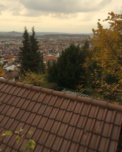 View of Gerlingen from above